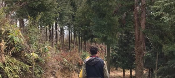 Two people hiking in the woods