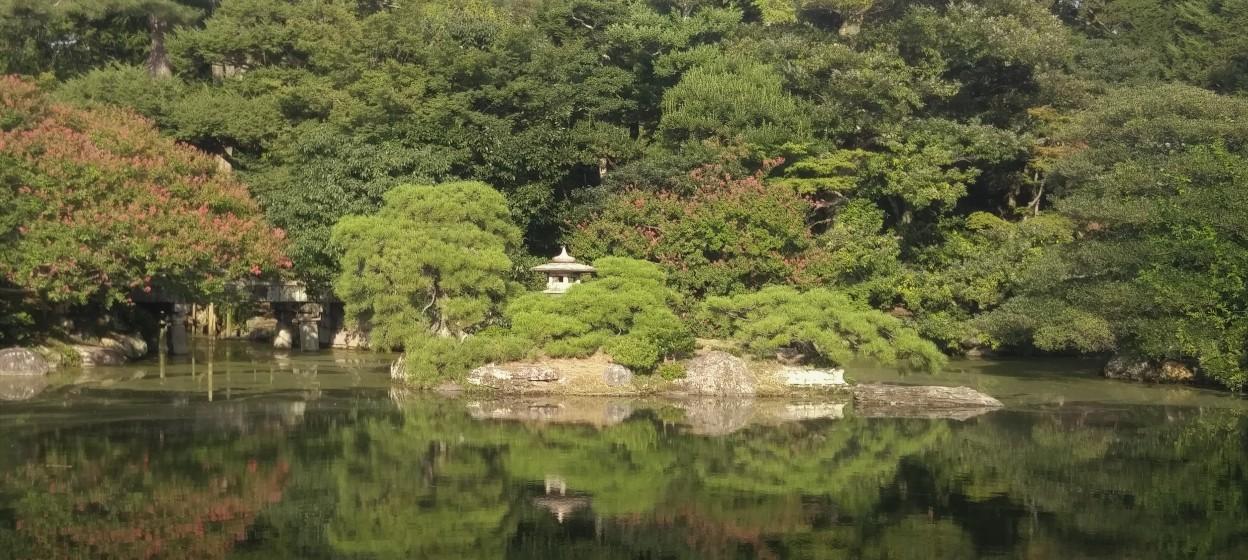 Pond in Kyoto